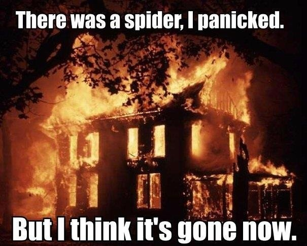 there-was-a-spider